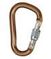 Karabinek Black Diamond Rocklock Screwgate Carabiner